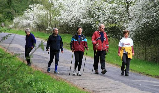5. Nordic Walking Wandertag 2011