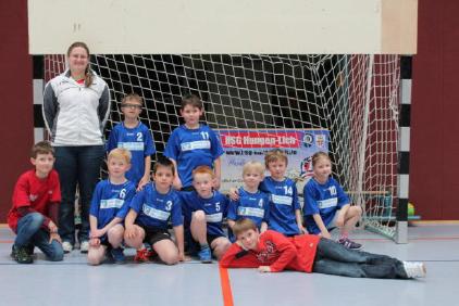 Handball 2014